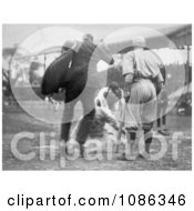 Umpire Waiting As A Baseball Player Steals Home Base Free Historical Baseball Stock Photography by JVPD