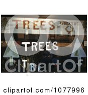 Window Display With Christmas Trees Plants And Wreaths Royalty Free Stock Photography